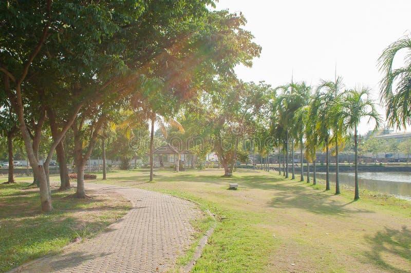 Jogging ślad zdjęcie royalty free