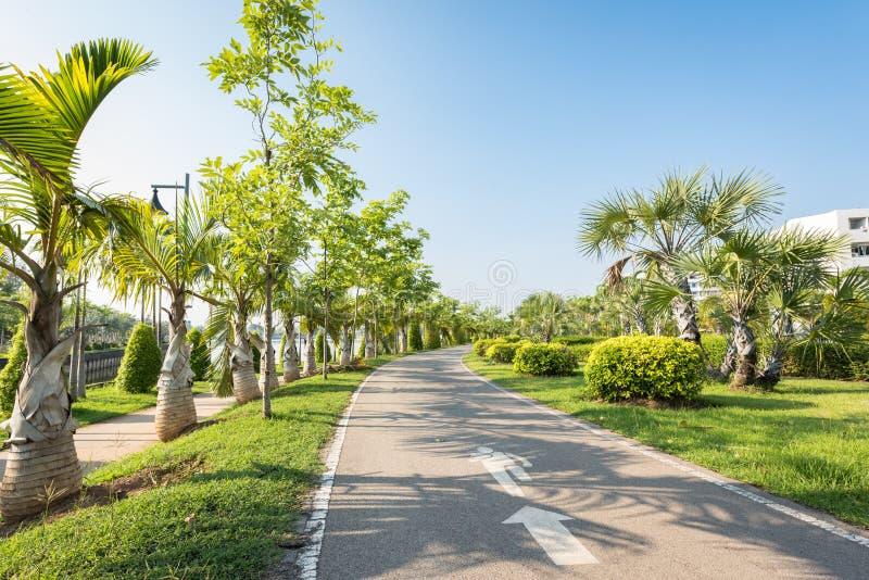 Jogging ślad przy ogrodowym parkiem i żadny ludźmi zdjęcia royalty free