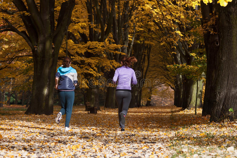 Jogging στο πάρκο στοκ φωτογραφίες με δικαίωμα ελεύθερης χρήσης
