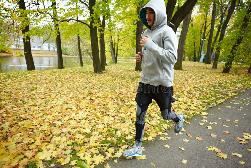 Jogging στο πάρκο στοκ φωτογραφία με δικαίωμα ελεύθερης χρήσης