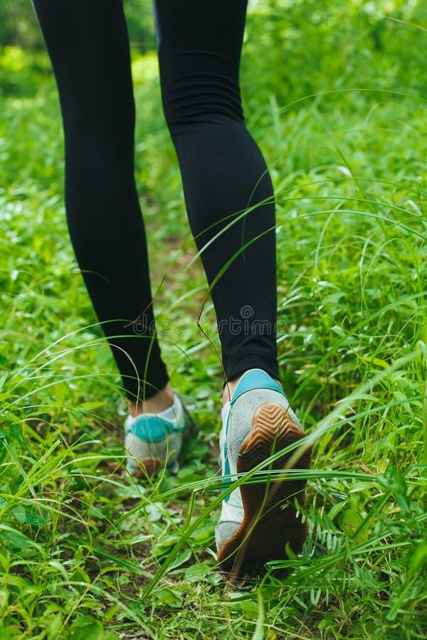 Jogging в пуще стоковая фотография rf