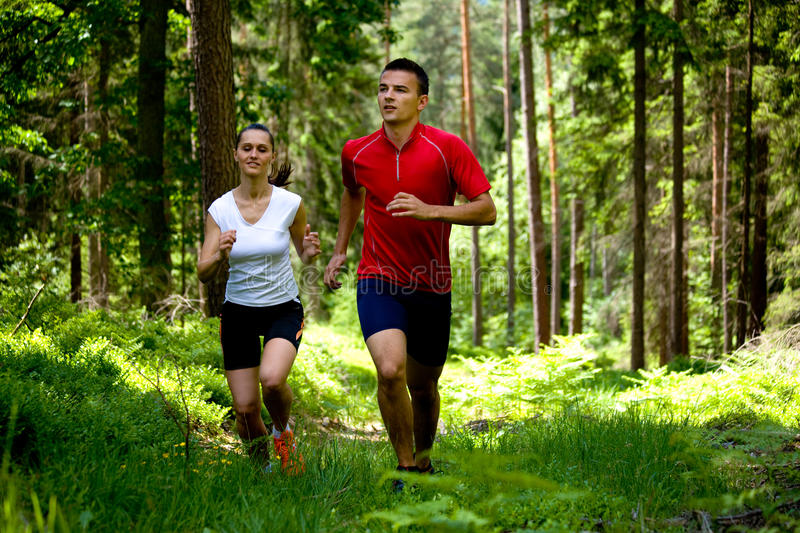 Download Jogging in forest stock photo. Image of forest, relaxation - 10619842