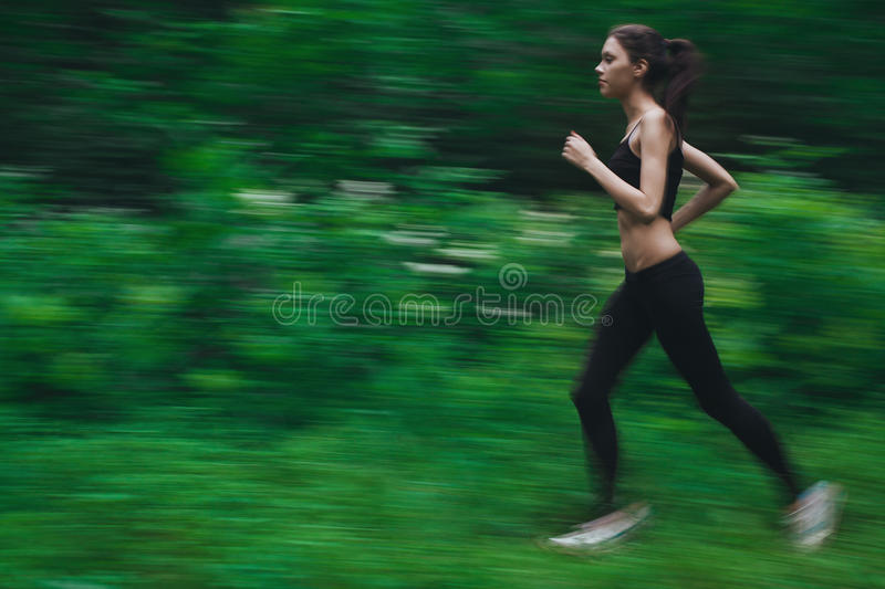 Jogging in forest royalty free stock image