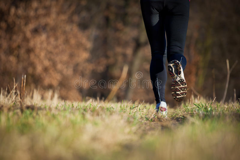 Download Jogging Outdoors In A Meadow Stock Image - Image: 22836653