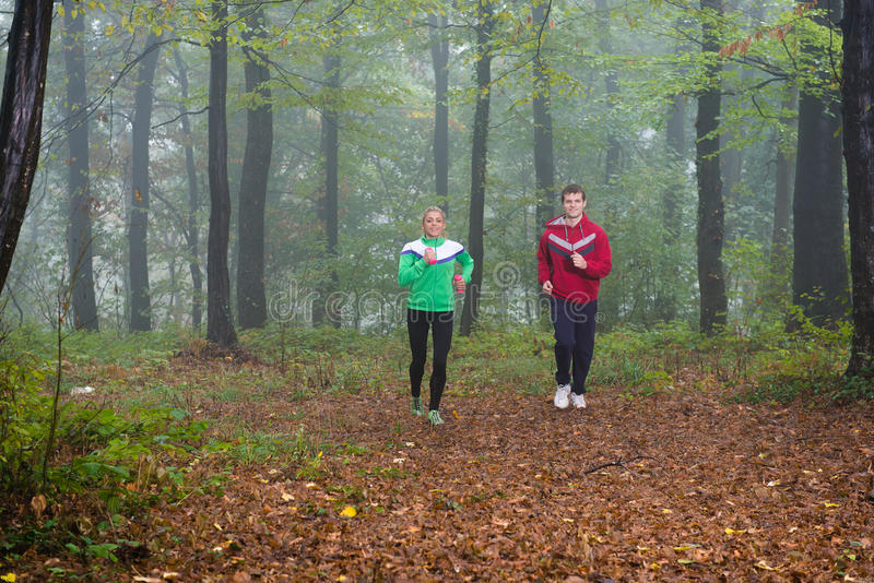 Download Jogging in pair stock image. Image of friendship, outdoors - 28839767