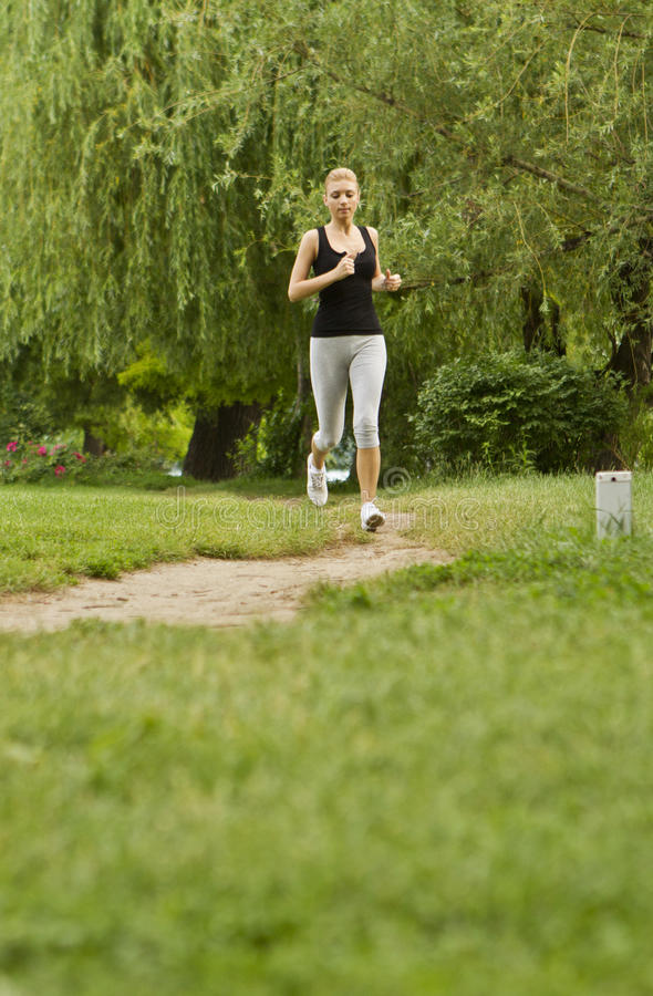 Download Jogging in park stock photo. Image of exercise, morning - 25982612