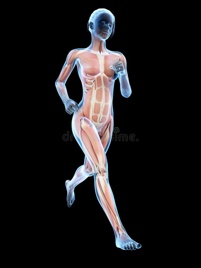 Jogging woman vector illustration