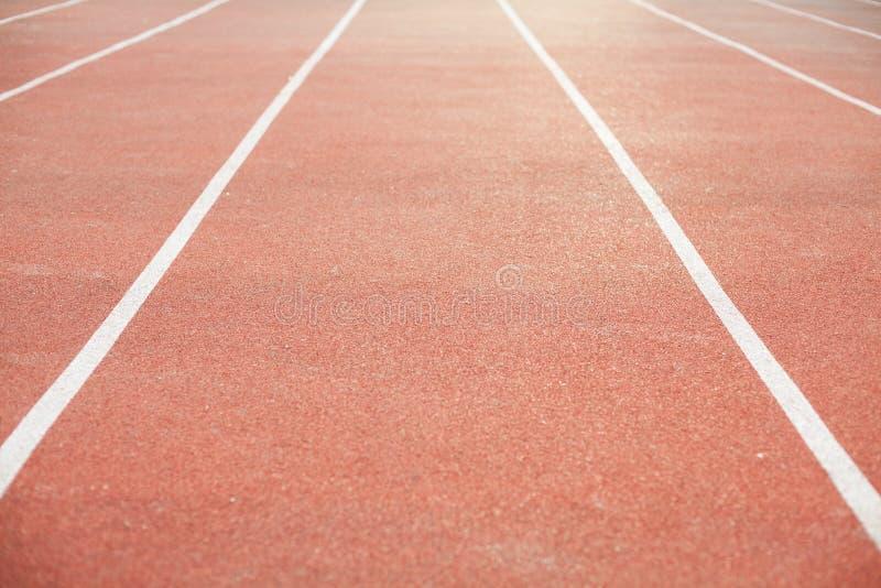 Jogging z miękkim konem białymi ocechowaniami i obraz royalty free