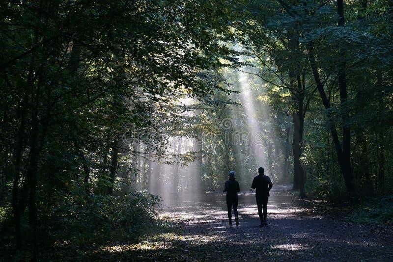 Joggingpaar tegen zonnestraal in donker bos wordt gesilhouetteerd dat royalty-vrije stock afbeelding
