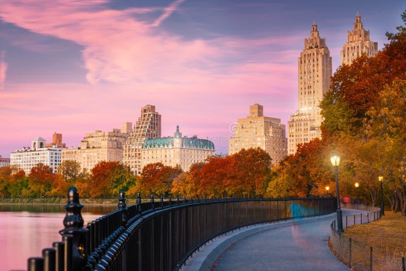 Joggingweg in Central Park in NY stock afbeeldingen