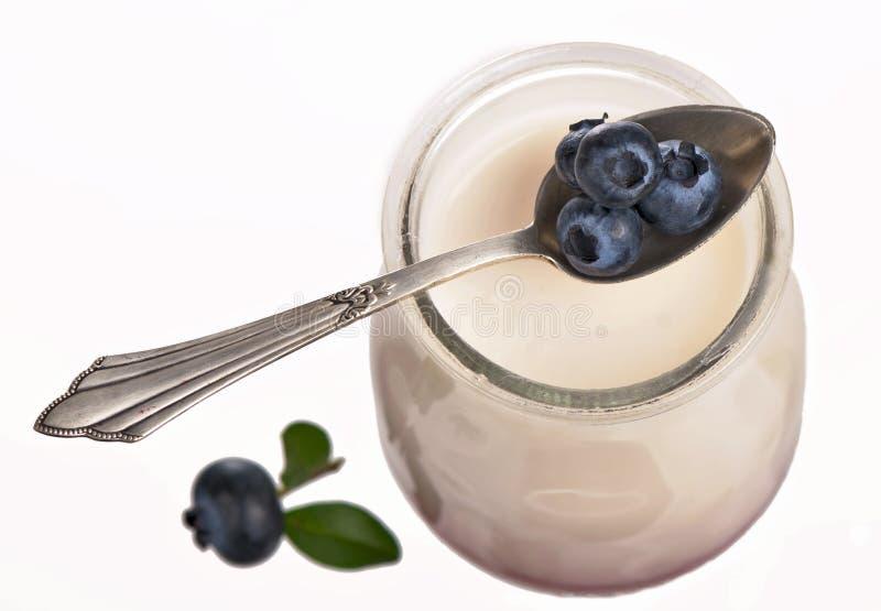 Joghurt getrennt auf weißem Hintergrund stockfoto