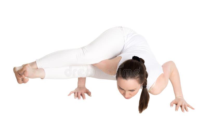 Jogi weiblich in Acht-Winkelyoga Haltung lizenzfreies stockbild