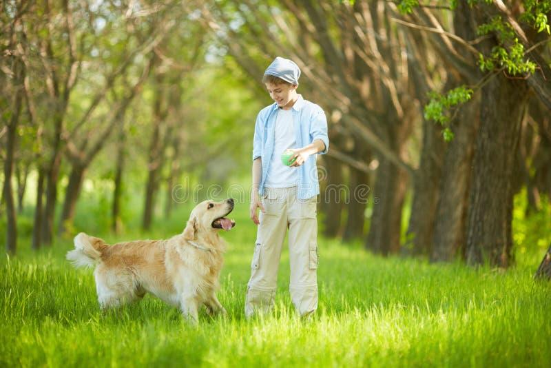 Jogo com cão imagens de stock royalty free