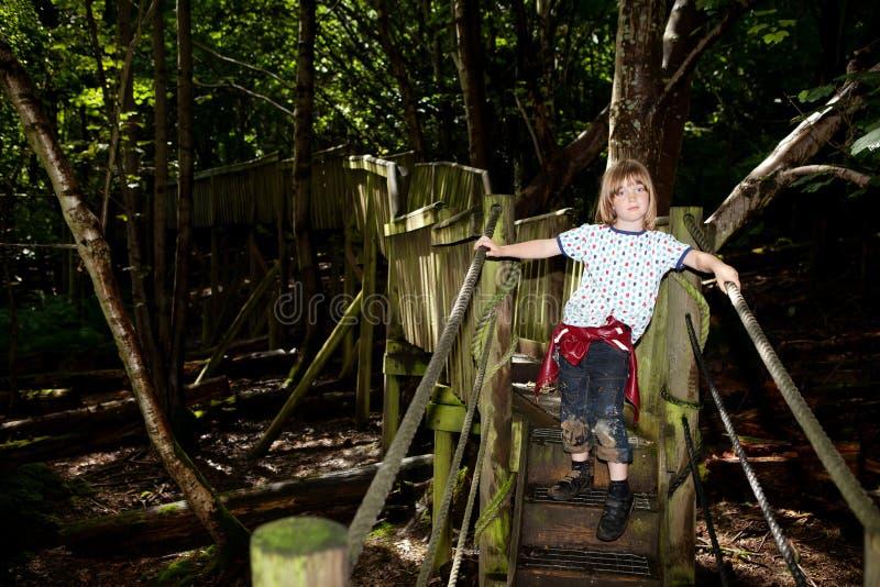 Jogo da criança das pontes das árvores de floresta foto de stock royalty free