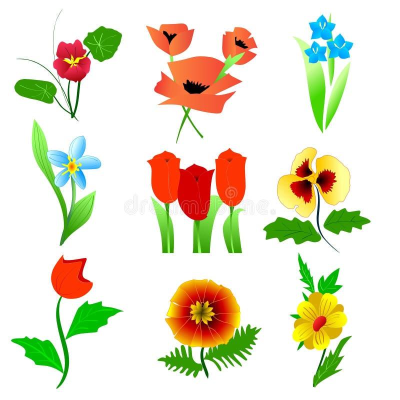Download Jogo da flor ilustração stock. Ilustração de botany, planta - 12803625