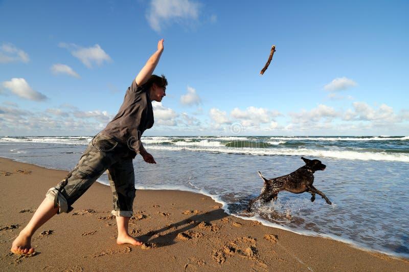 Jogo da menina com cão foto de stock