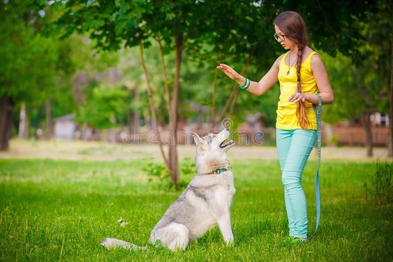 Jogo da menina com cão ronco fotografia de stock