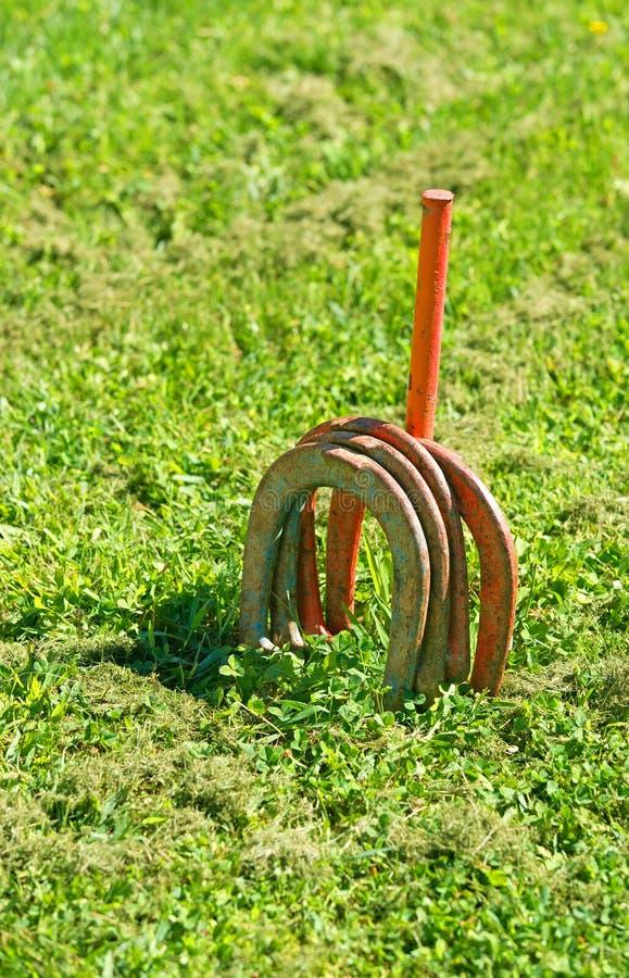 Jogo da sapata do cavalo no gramado foto de stock