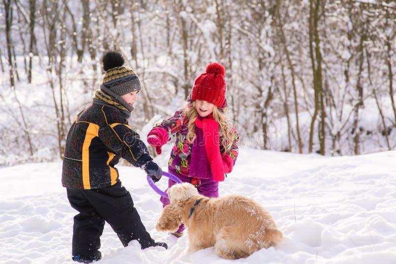 Jogo das crianças com o cão na floresta do inverno imagem de stock royalty free
