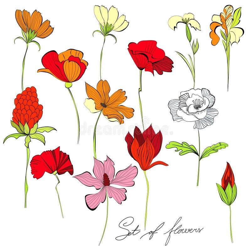 Jogo das flores ilustração royalty free