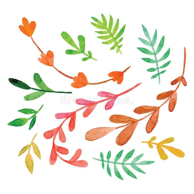 Jogo das flores pintadas na aguarela ilustração royalty free