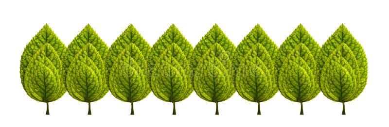 Jogo das folhas verdes imagens de stock royalty free