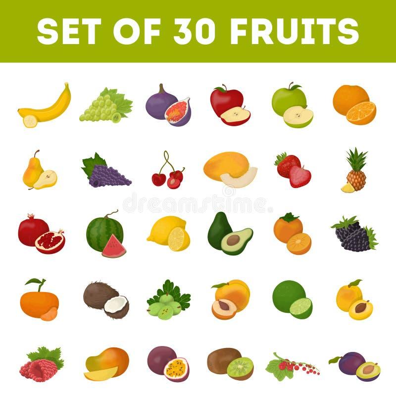 Jogo das frutas ilustração do vetor