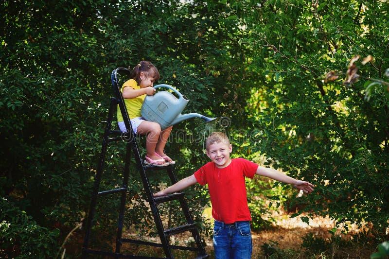 Jogo de crianças alegre no jardim com uma lata molhando imagem de stock