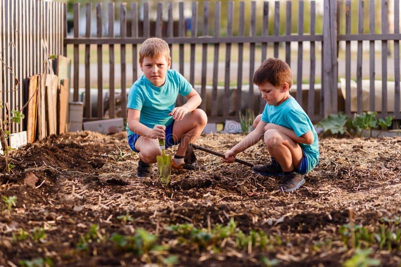 Jogo de crianças com a terra no jardim imagem de stock