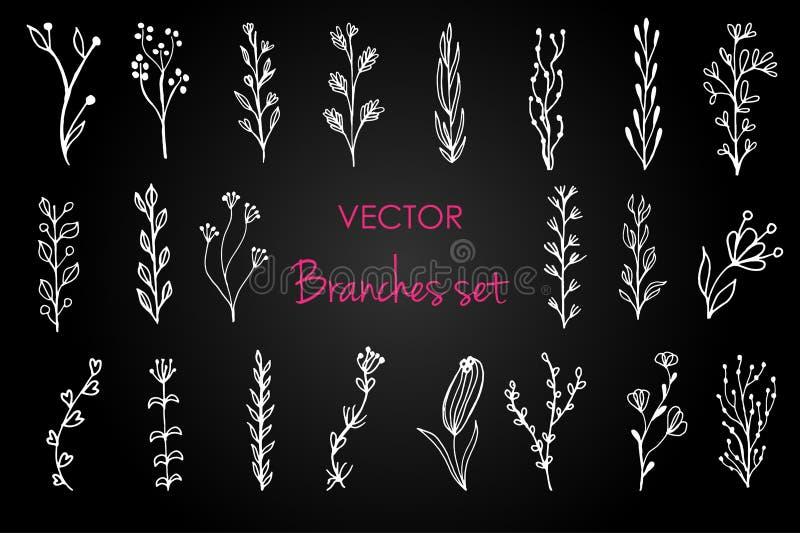 Jogo de elementos florais do vintage Decoração para o convite do projeto, cartões de casamento, dia de Valentim, cumprimentando ilustração do vetor