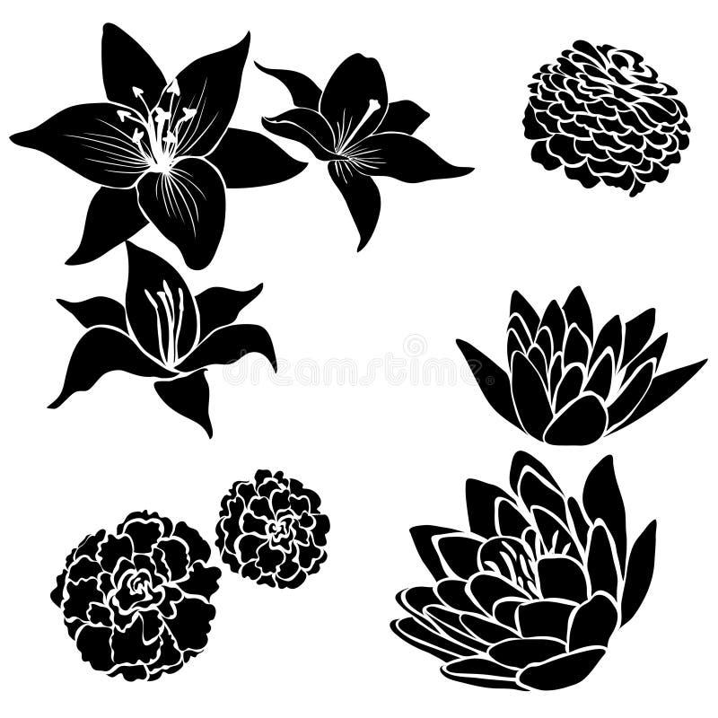 Jogo de elementos pretos do projeto da flor ilustração royalty free