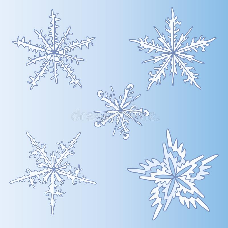 Jogo de flocos de neve decorativos Teste padrão do inverno exotica Forma em uma ilustração do vetor ilustração stock