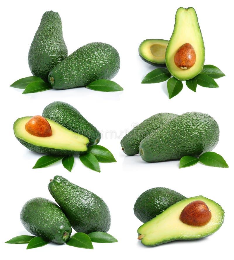 Jogo de frutas de abacate verdes com folha imagem de stock