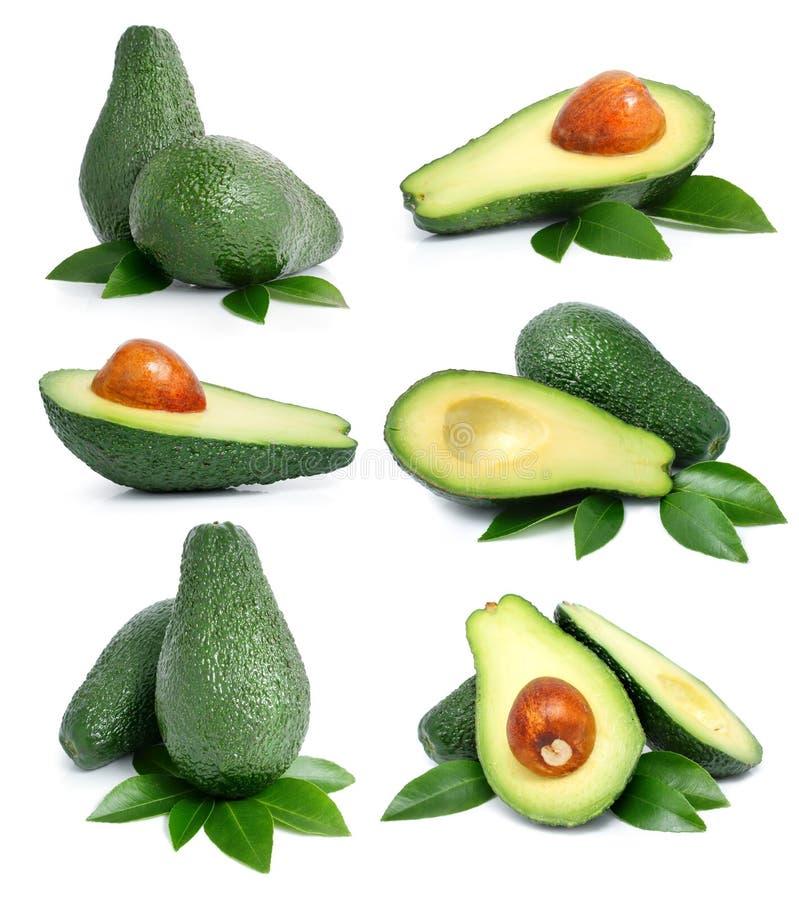 Jogo de frutas de abacate verdes com folha fotos de stock