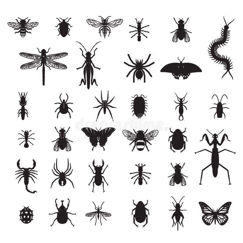 Jogo de insetos do vetor ilustração stock