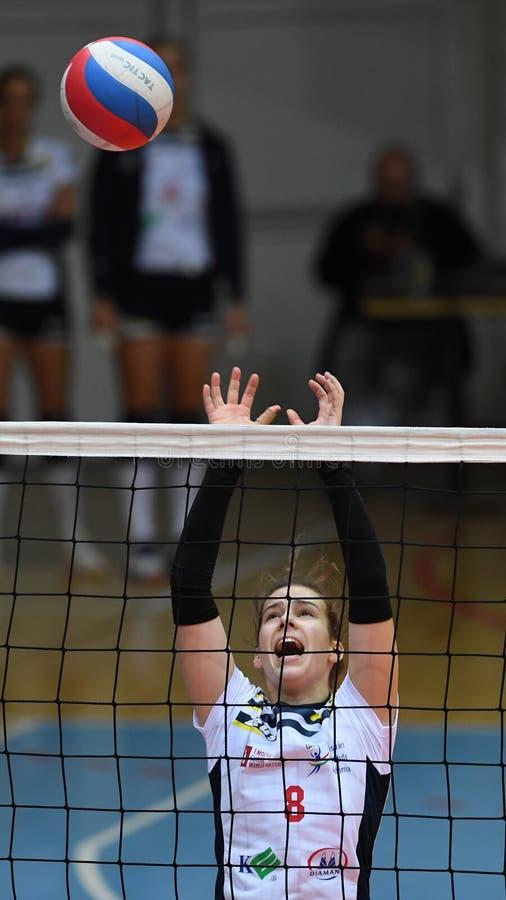 Jogo de voleibol entre Kaposvar e Palota VSN imagens de stock royalty free