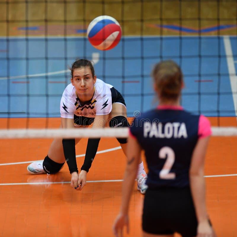 Jogo de voleibol entre Kaposvar e Palota VSN imagem de stock