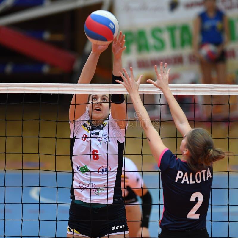 Jogo de voleibol entre Kaposvar e Palota VSN imagem de stock royalty free