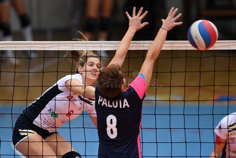 Jogo de voleibol entre Kaposvar e Palota VSN fotos de stock royalty free