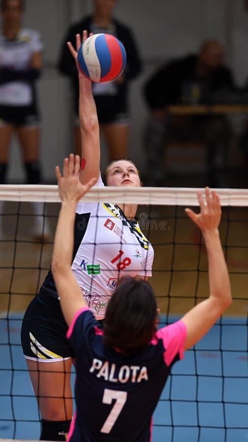 Jogo de voleibol entre Kaposvar e Palota VSN fotos de stock