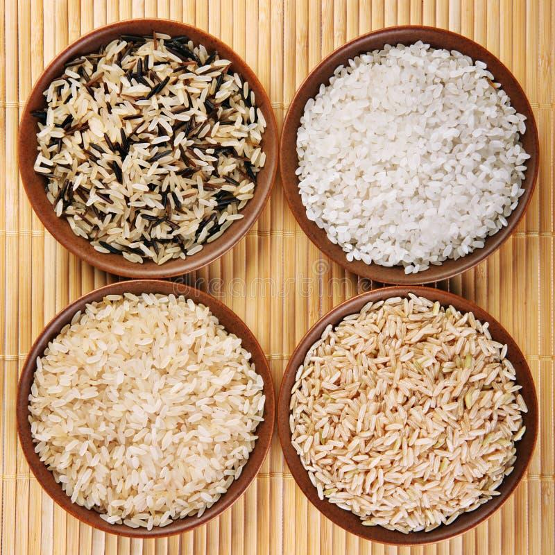 Jogo do arroz fotografia de stock