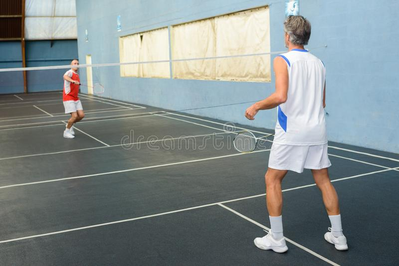 Jogo do badminton em andamento fotografia de stock royalty free