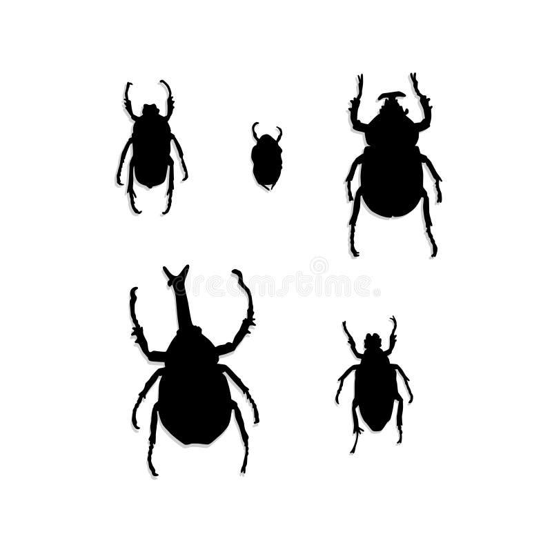 Jogo do vetor da silhueta dos besouros e dos erros imagens de stock