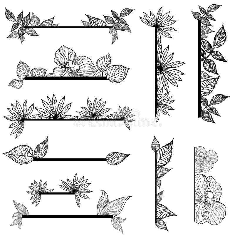 Jogo do vetor de elementos do projeto do vintage com folhas ilustração stock