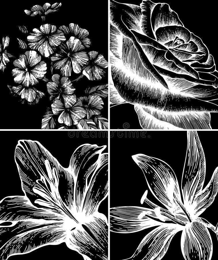 Jogo dos fundos com flores decorativas. ilustração do vetor
