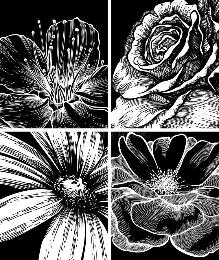 Jogo dos fundos com flores, mão-desenho. ilustração stock