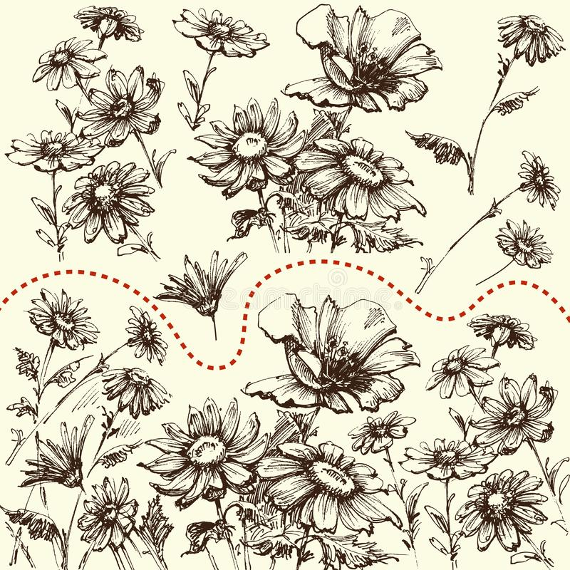 Jogo floral Uma coleção de flores tiradas mão ilustração royalty free
