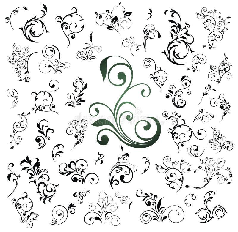 Jogo grande de elementos florais ilustração stock