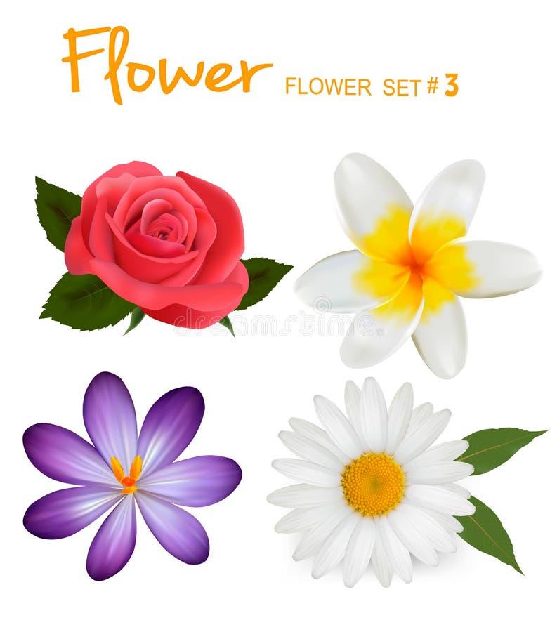 Jogo grande de flores coloridas bonitas ilustração royalty free