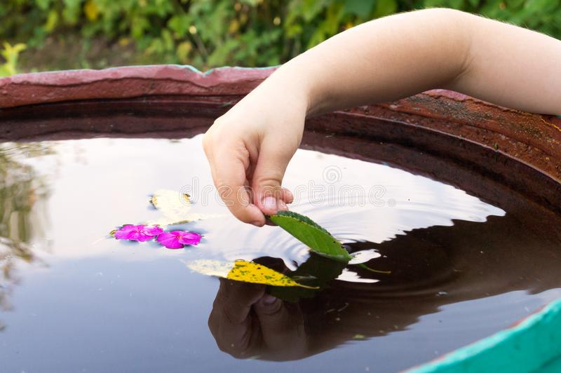 Jogos do menino com folhas fotografia de stock